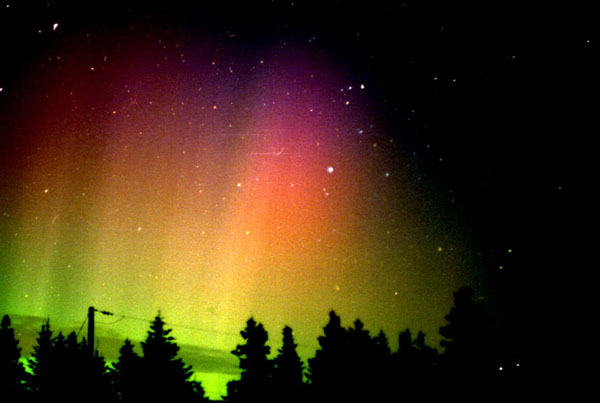 les aurores bor 233 ales auroras